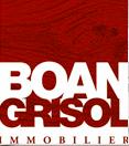 Boan Grisol Agency Logo
